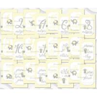 Milníkové kartičky No.22